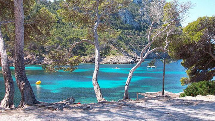 pescaturismomallorca.com excursiones en barco a Cabo Pinar Mallorca