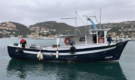 www.fishingtripmajorca.co.uk boat trips at Majorca with Ferre