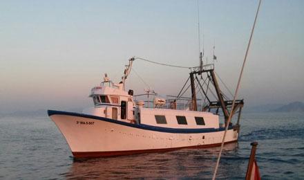 Excursiones de pesca en cala ratjada con mercant - Todo sobre barcos ...