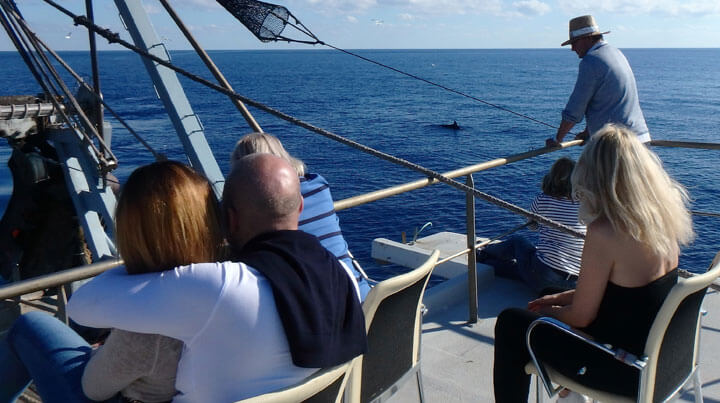 fishingtripmajorca.co.uk boat tours from Palma with Manolo