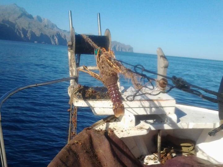 fishingtripmajorca.co.uk boat tours to Majorca with Pedruscada